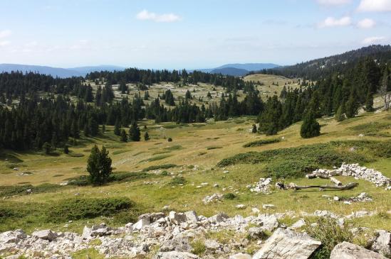Les Hauts Plateaux aux alentours de la Jasse du Play (panorama depuis la fontaine)