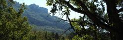 Les Roches de Treillaras vues depuis Les Condamines
