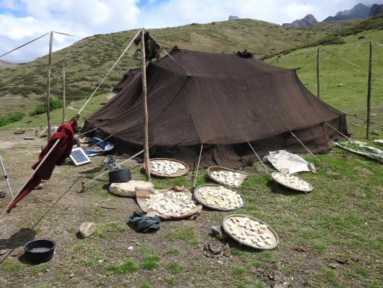 Séchage du fromage devant une tente nomade à Lajar Sumna