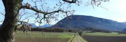 La montagne d'Eson vue depuis Cabanas