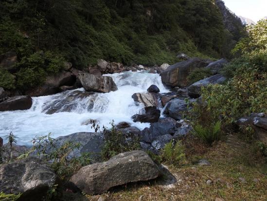 Le long de la Tamur khola à l'approche de Jongin kharka