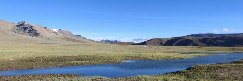 Vue panoramique du plateau des lacs Kyun Tso (Le Nidar La est tout au fond)