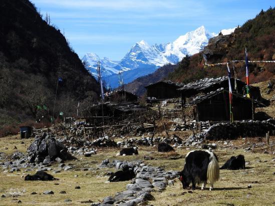 Thudam, un village népalais tourné vers la Chine pour sa subsistance...