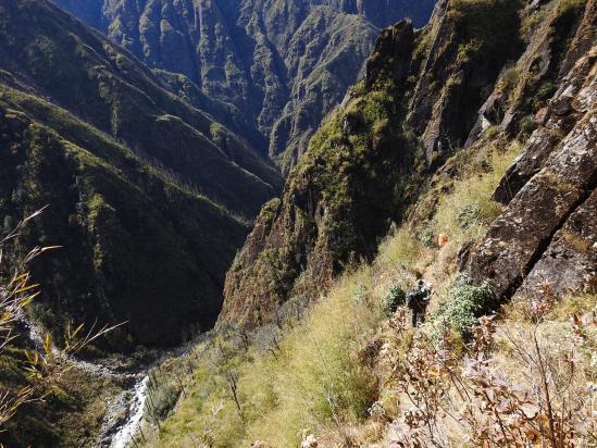 L'ile de la Réunion ? Non, non, vous êtes bien sur la GHT au Népal (sentier entre Thudam et Chyamtang)