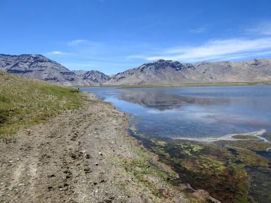 Sur le rivage SE du lac du Tsomo Riri