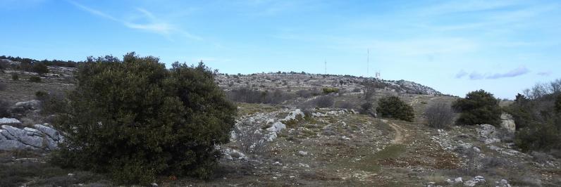 Sur le plateau sommital à l'ouest de la Sainte Baume