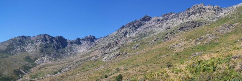 Le vallon de l'Ercu avec le Capu Falu tout au fond
