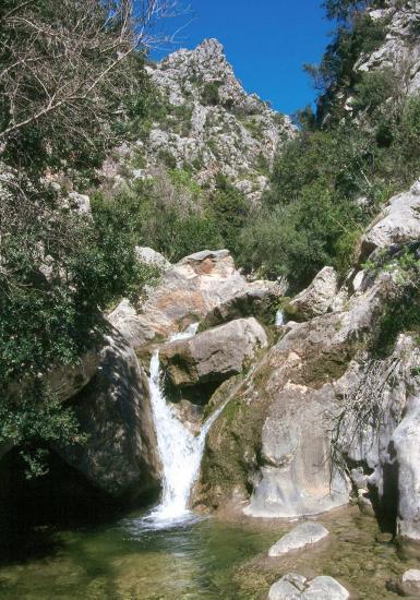 Es Barranc (descente du col de l'Ofre)