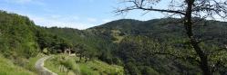 La ferme de Colombe à l'approche de Saint-Julien-le-Roux