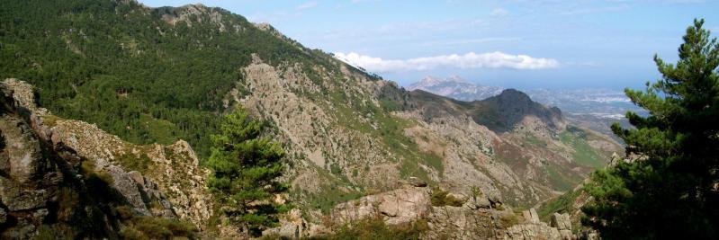 En s'élevant le long du vallon de Frintognia