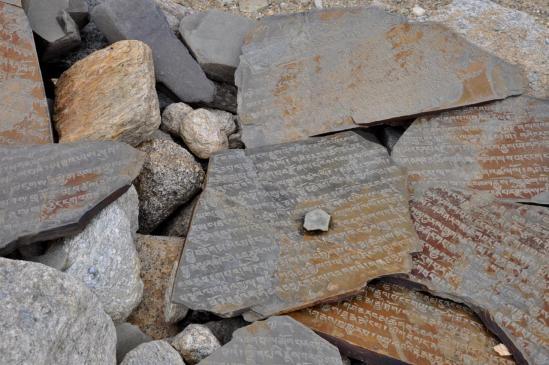 Mur de manis en bordure du Tsomoriri
