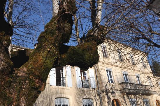 Saint-Nazaire-le-désert (mairie)