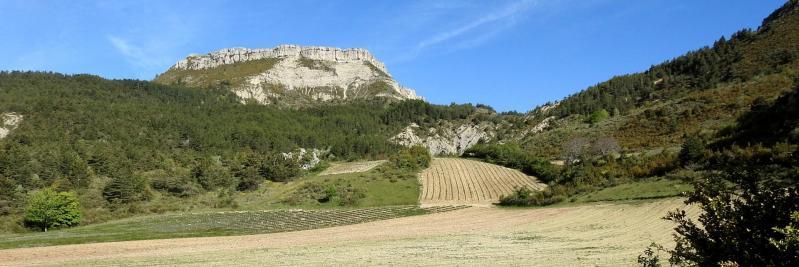 La montagne de Chamouse