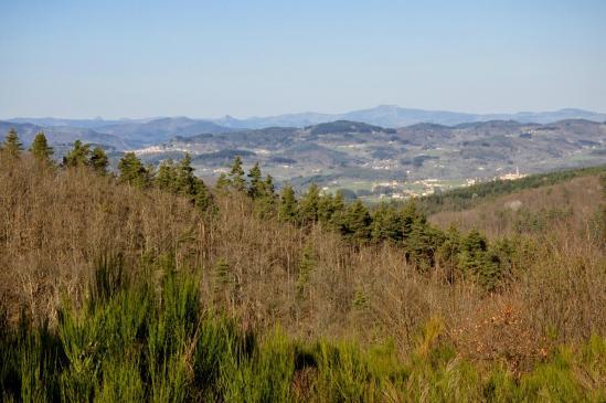 Depuis le Serre de Barrite on domine le plateau de Vernoux-en-Vivarais