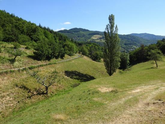 Entre le hameau de Selve et la ferme de Sarméo (Les Combes)
