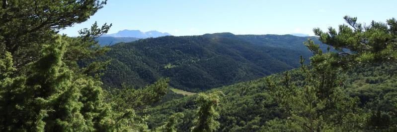 Le vallon du Courenq vu depuis la Serre du Charron