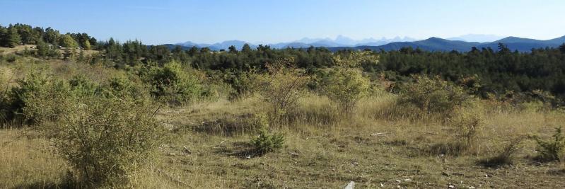 Le Dévoluy vu depuis le plateau de l'Assotte