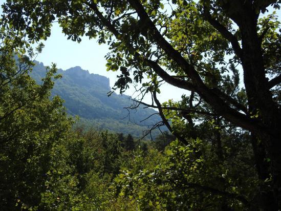 Les Roches de Treillaras vues depuis le sentier entre Les Condamines et Les Blachons