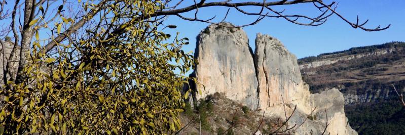 L'Aiguille vue depuis le col de l'Aiguille (vallée de la Roanne - St Benoît-en-Diois)