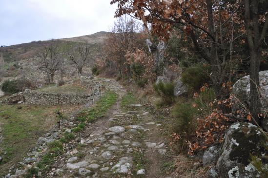 Sur le chemin pavé entre La Serre et Le Vignal au pied du serre de Leyrier