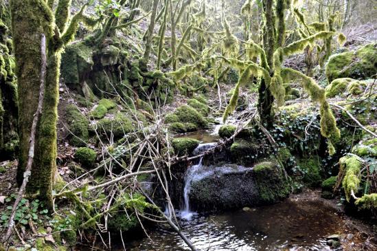 Entre Magerouan et Mauves, l'incroyable moment de la traversée du ravin du Fonloc (un petit air de l'Île de la Réunion ?)
