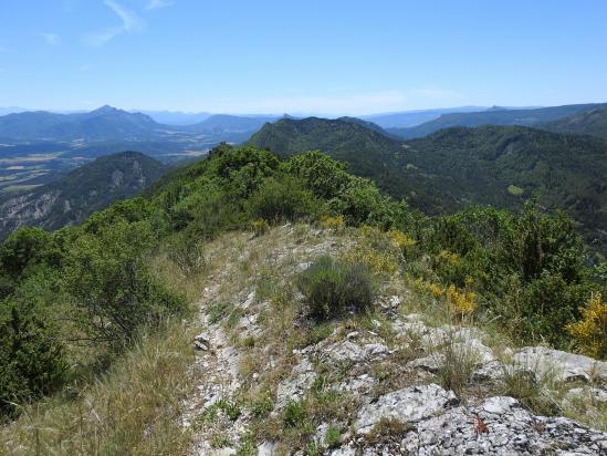 La vallée du Buëch vue depuis la crête de Boulon