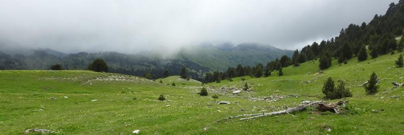 Descente de la Montagnette vers la cabane de l'Essaure