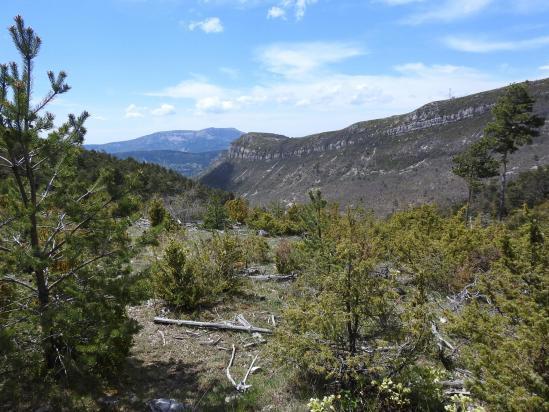 La montagne de l'Eyriau et Angèle vues depuis l'Assotte