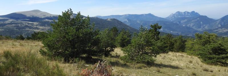 Depuis les crêtes de la montagne d'Aucelon, vue sur la Servelle, Couspeau et les Trois-Becs