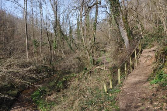 Le long du ruisseau de Riverolles