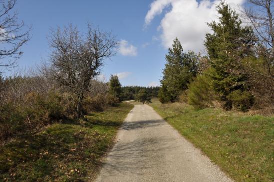 Descente du Serre de Chastelou vers le vallon du Turzon