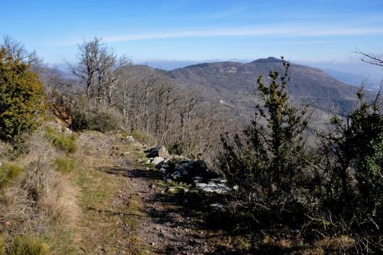 Entre Blandine et Le Tru (au loin le sommet de Charray)