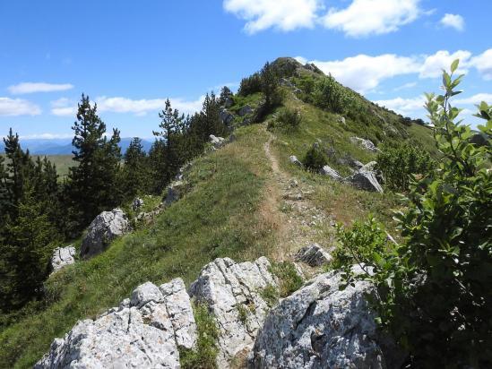Sur la crête de la montagne de l'Aup