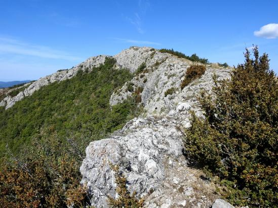Descente de l'arête SE de la montagne des Ruelles