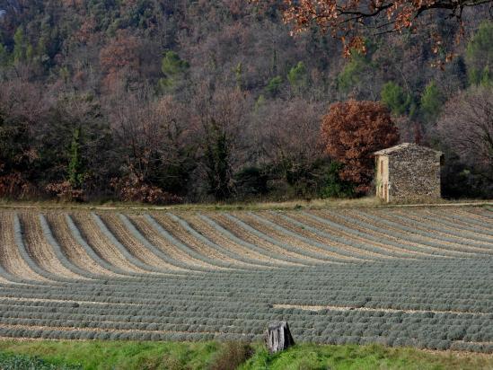 Retour vers Puy-Saint-Martin depuis Manas (les Touches)