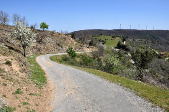 A l'approche de la ferme de Tromparent (à l'arrière, le parc d'éoliennes du Serre de Planèze)