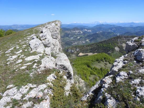 Au sommet de la montagne de Chamouse