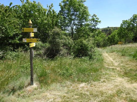 Au lieu-dit Le Col au-dessus de Jaunac, il y a bien des panneaux directionnels...