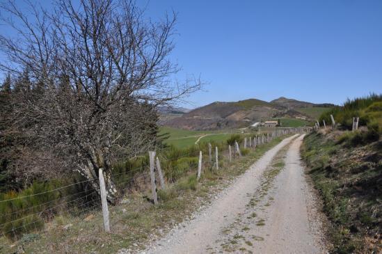A l'approche du col de Sarrasset