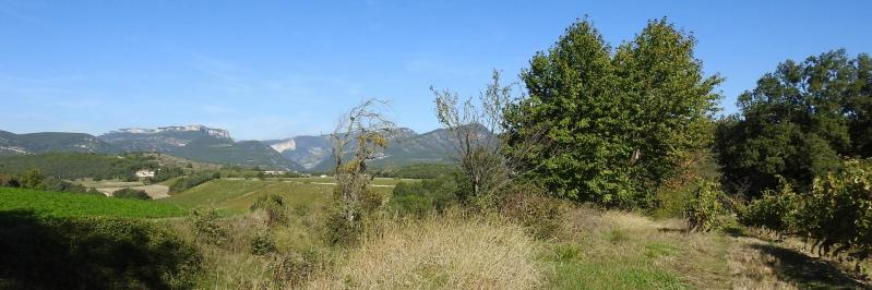 Depuis le vignoble du domaine Peylong, vue sur la haute vallée de la Gervanne