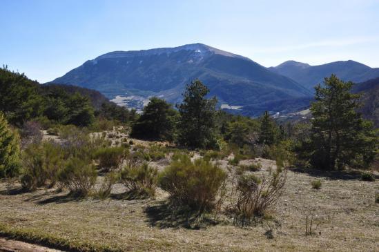 La montagne d'Angèle vue depuis le col de Muse