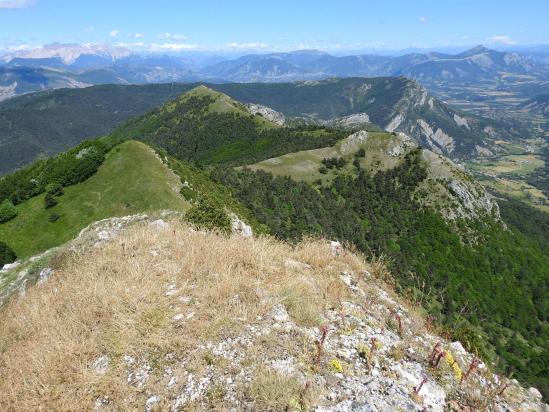 Au bout du bout de la montagne de l'Aup avec le Dévoluy à l'horizon
