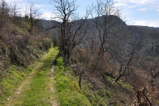 Vue sur le volcan de la Chirouse sur le chemin entre La Pizette et le col du Muret