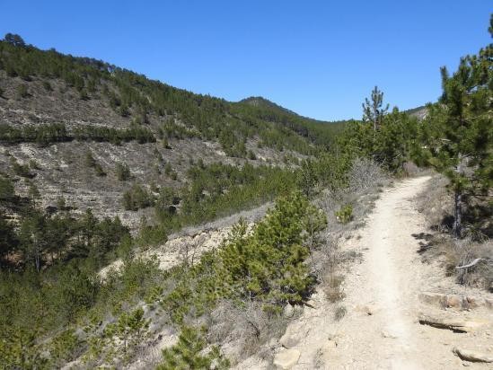 Sur le sentier de descente vers le fond du thalweg du ruisseau de Charsac