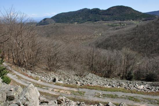 A l'approche du col de l'Escrinet, on traverse une belle coulée de basalte au coeur du Bois de la Faye