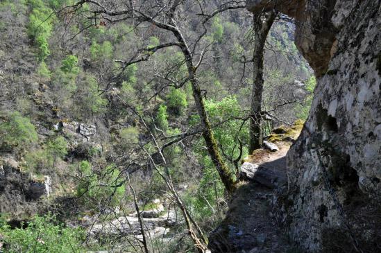 Descente le long du ruisseau du Glo depuis Péaillères