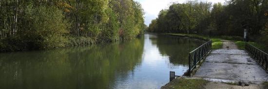 Le canal du Loing entre Néronville et Toury