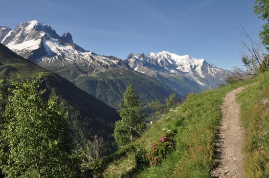 Aiguille Verte et Mont-Blanc vus depuis le sentier des Posettes
