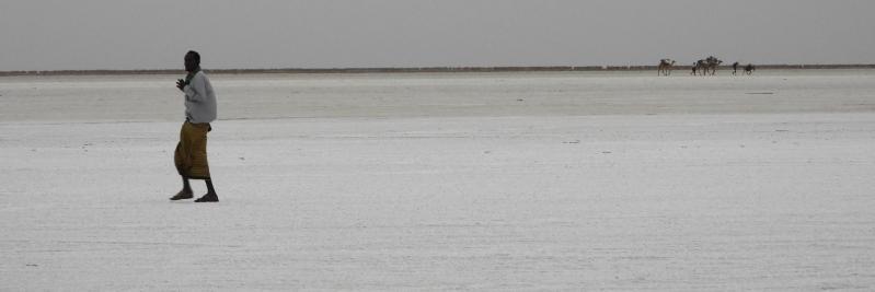 Sur les rives du lac Assal du côté d'Hamed Ila