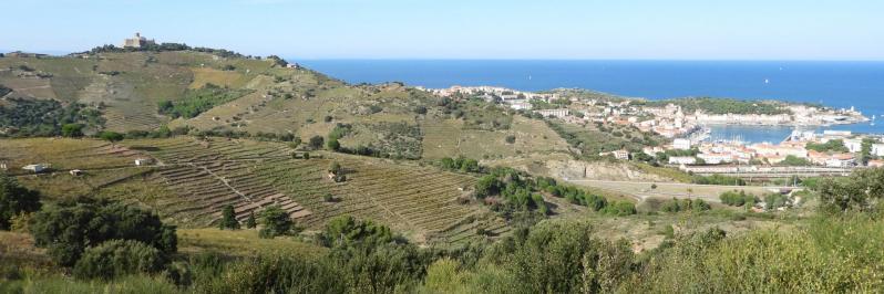 Sur l'itinéraire de retour à Collioure du côté du coll de Mollo, Port-Vendres et le fort St Elme